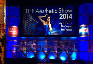 The Aesthetic Show 2014!